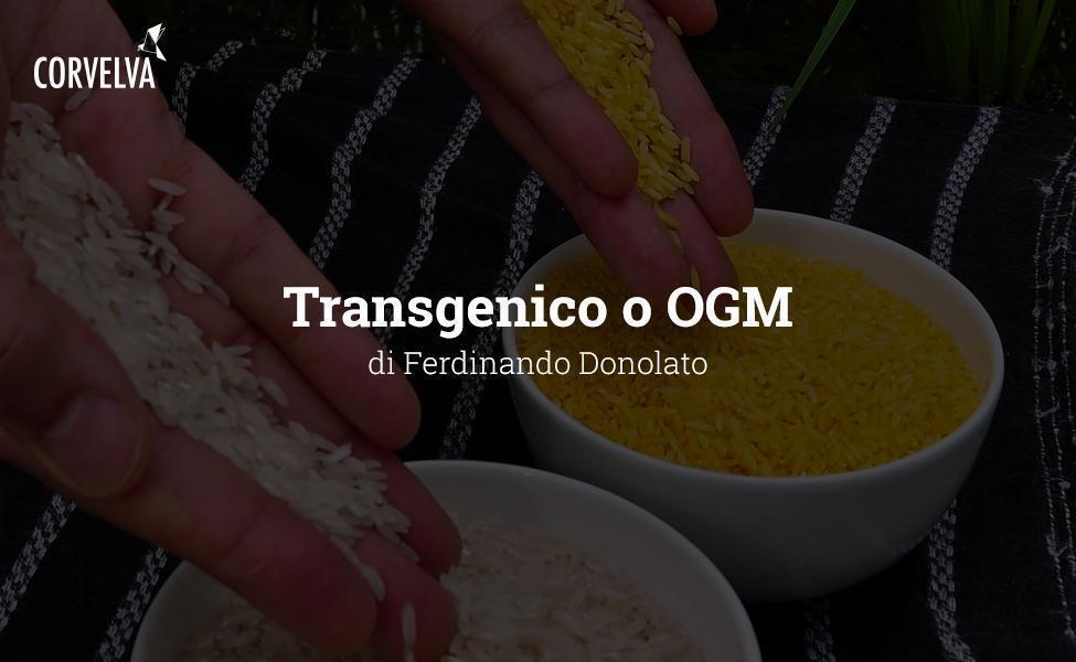 מהונדס או GMO
