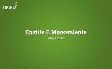Monovalent hepatitis B