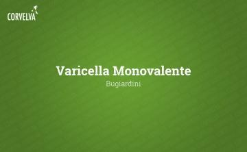 Monovalent chickenpox