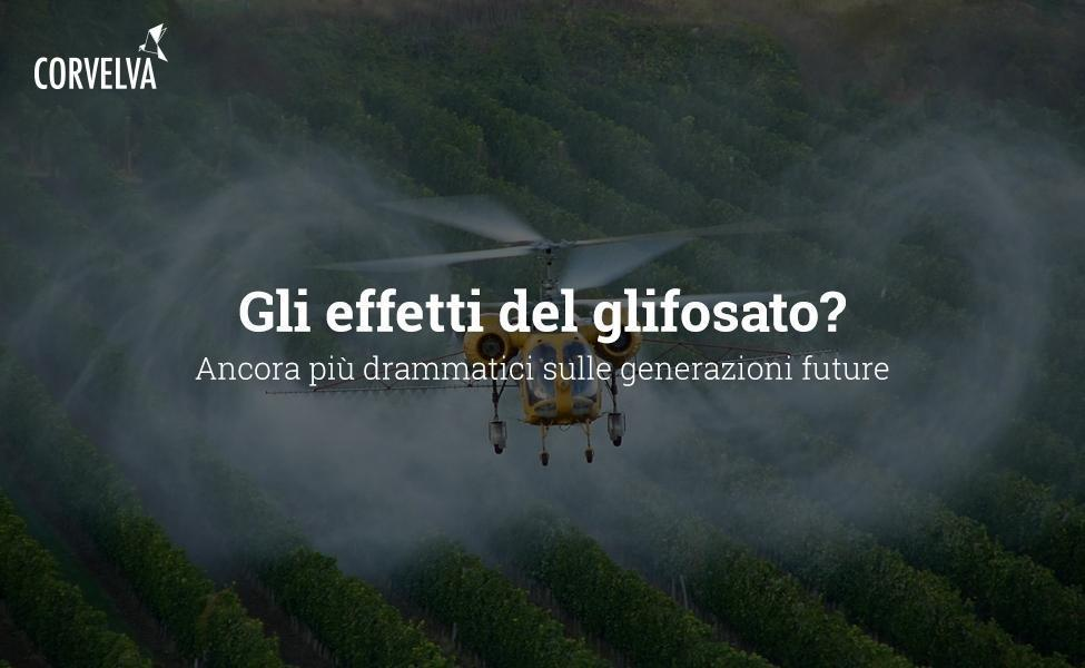 The effects of glyphosate? Even more dramatic about future generations