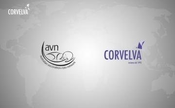 "Network Inc. (AVN) מצטרפת ל""שותף הקואליציה ""של קורבלבה."